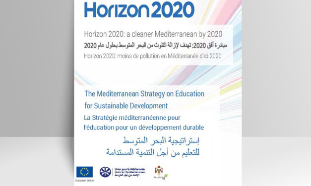 Mediterranean Strategy on ESD (2014)