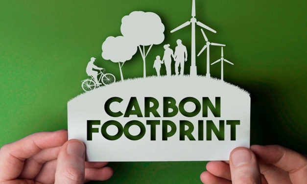 Misconceptions on our carbon footprint & how to reduce it