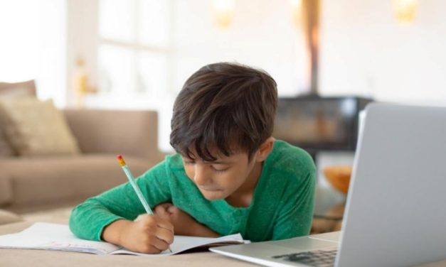 Rapid transition to online learning stresses inequalities