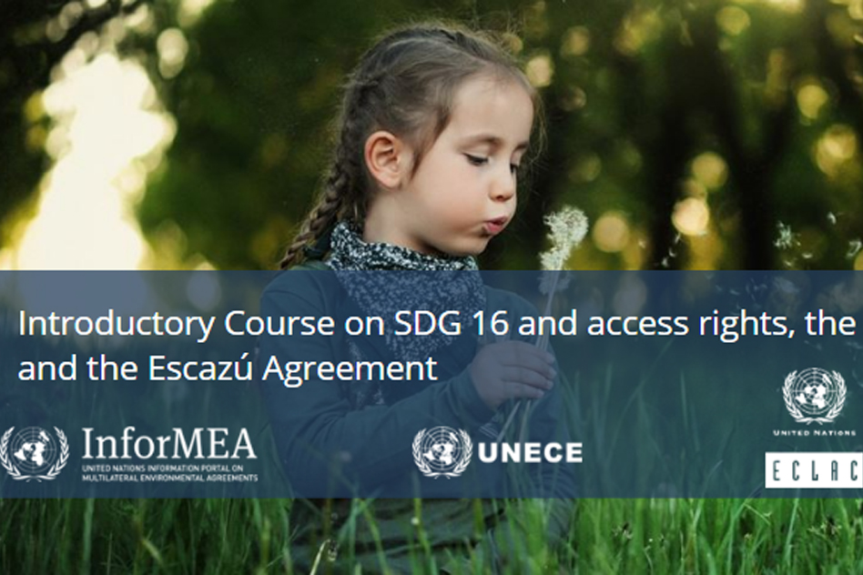 Introductory Course on SDG 16 & access rights