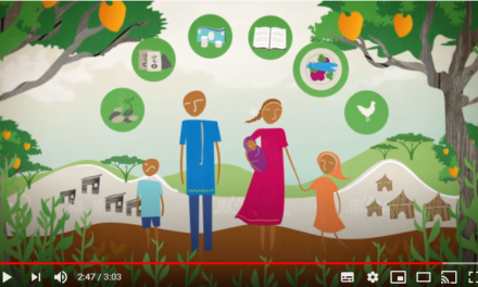 How are gender & environment linked?