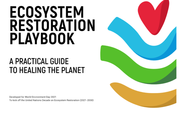Your guide to help the planet by UNEP!