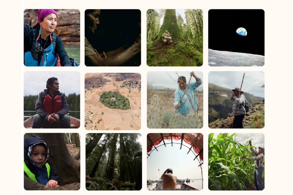 12 short films to celebrate earth week