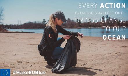 Make Europe Blue Campaign