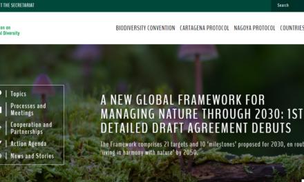 Paris-style plan by the UN to halt biodiversity loss