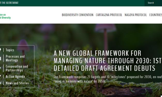 UN's Paris-style plan to halt biodiversity loss